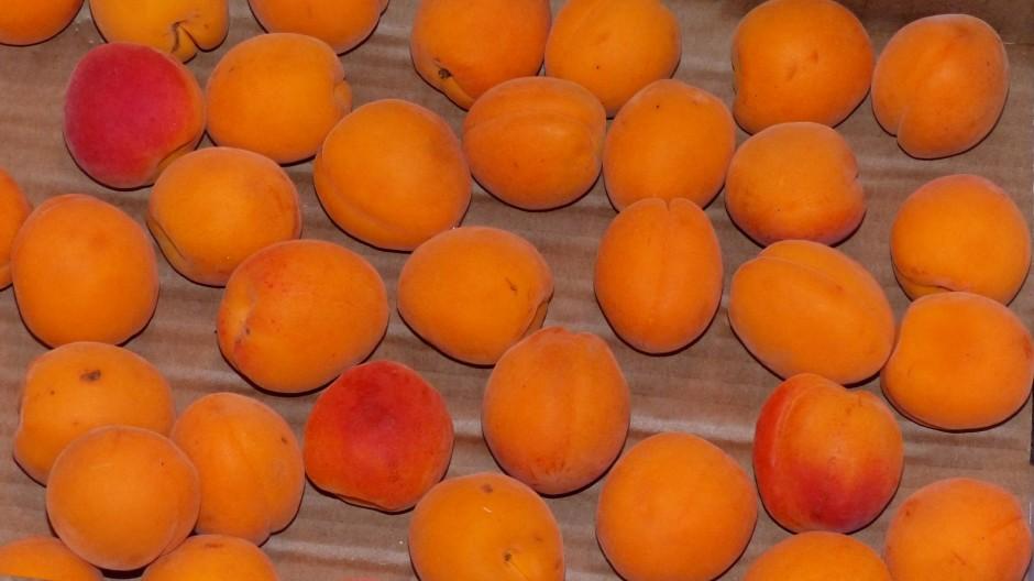 Lait d'amande aux abricots